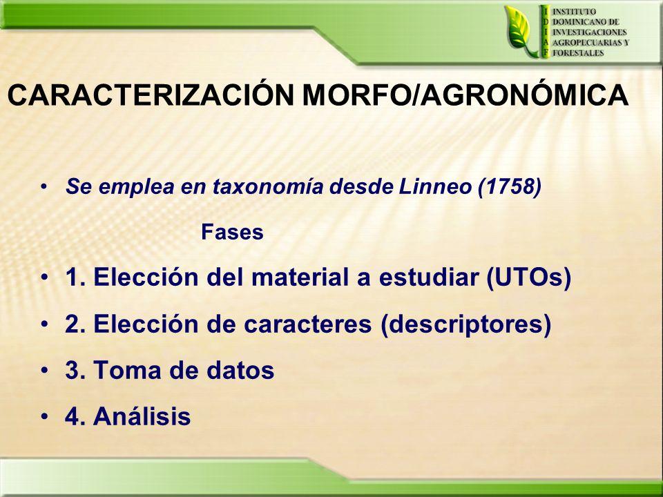 CARACTERIZACIÓN MORFO/AGRONÓMICA Se emplea en taxonomía desde Linneo (1758) Fases 1. Elección del material a estudiar (UTOs) 2. Elección de caracteres