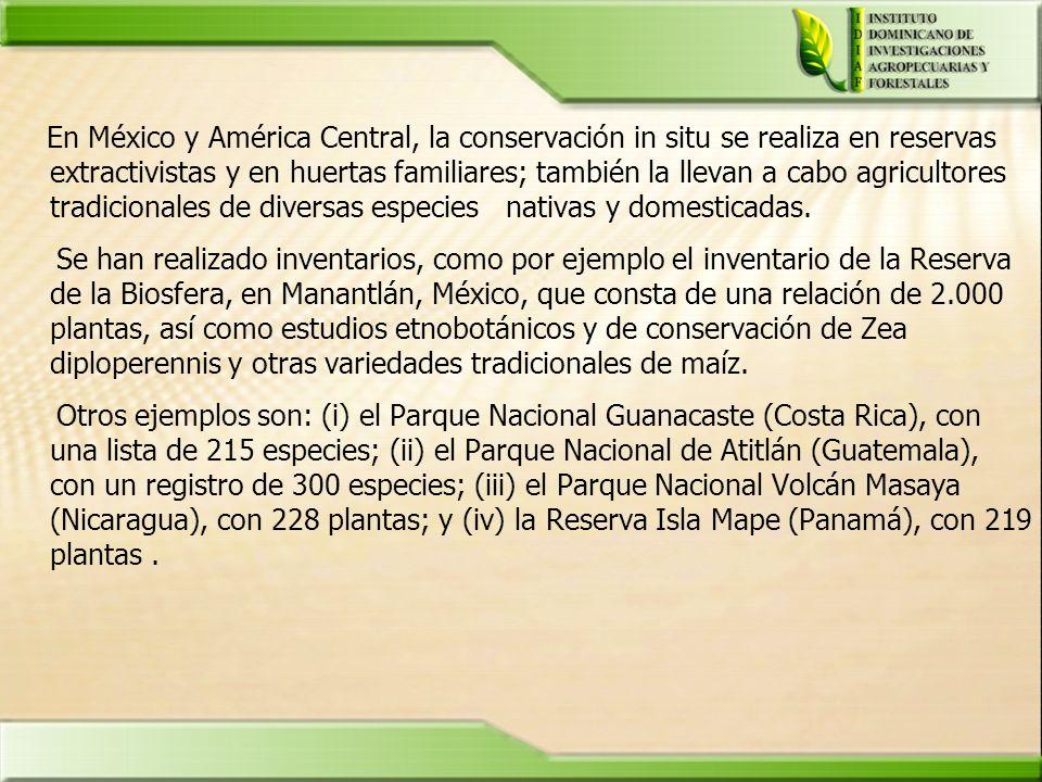 En México y América Central, la conservación in situ se realiza en reservas extractivistas y en huertas familiares; también la llevan a cabo agriculto