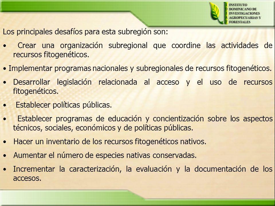 Los principales desafíos para esta subregión son: Crear una organización subregional que coordine las actividades de recursos fitogenéticos. Implement