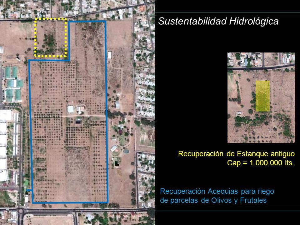 Sustentabilidad Hidrológica Recuperación de Estanque antiguo Cap.= 1.000.000 lts. Recuperación Acequias para riego de parcelas de Olivos y Frutales