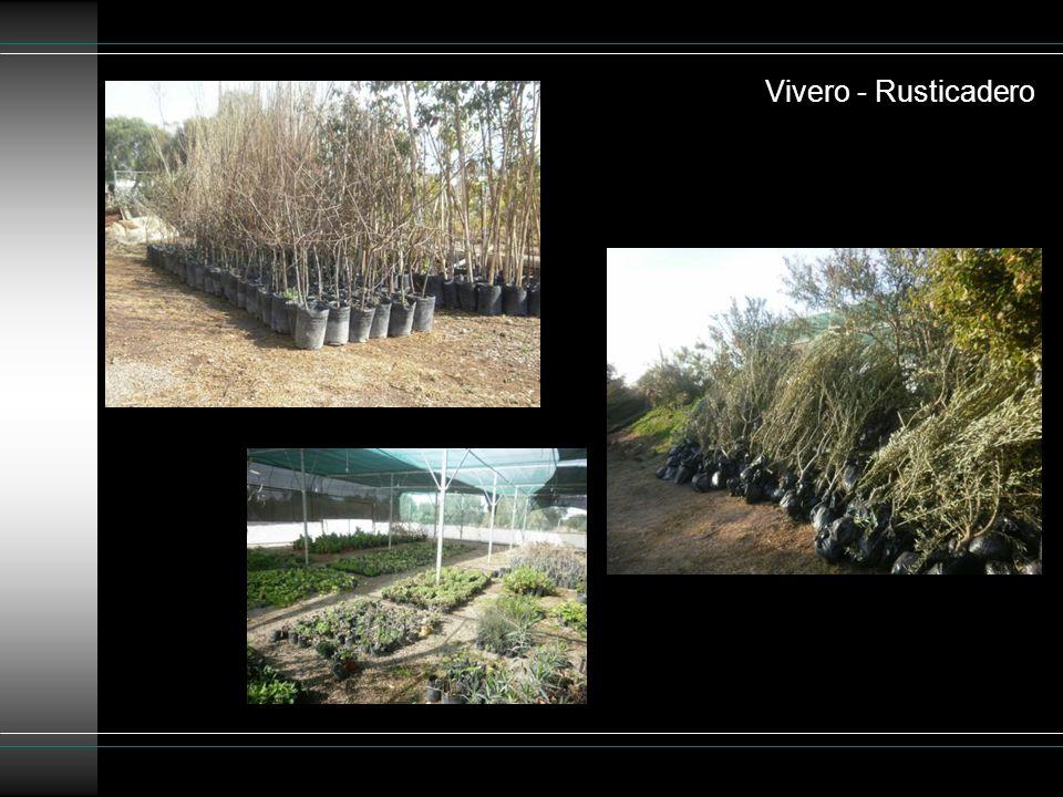 Vivero - Rusticadero