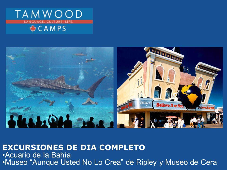 EXCURSIONES DE DIA COMPLETO Acuario de la Bahía Museo Aunque Usted No Lo Crea de Ripley y Museo de Cera