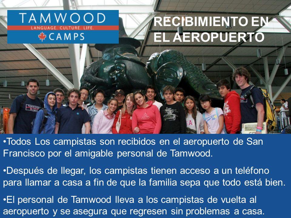 RECIBIMIENTO EN EL AEROPUERTO Todos Los campistas son recibidos en el aeropuerto de San Francisco por el amigable personal de Tamwood.
