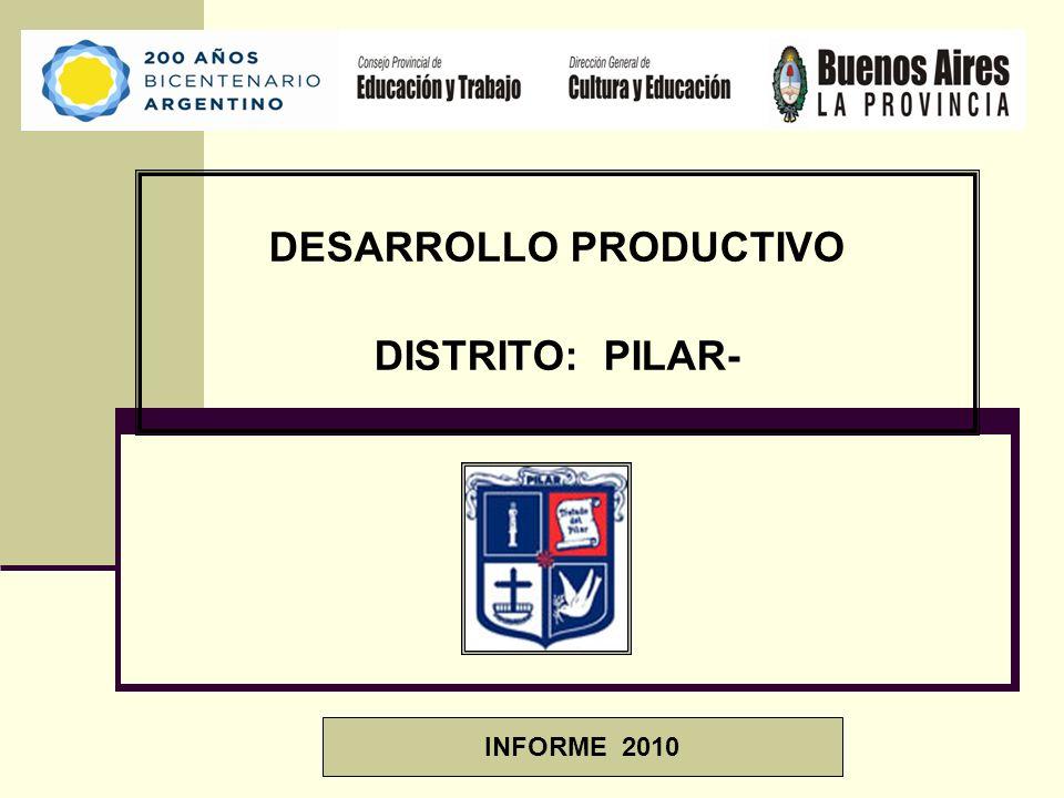 DESARROLLO PRODUCTIVO DISTRITO: PILAR- INFORME 2010