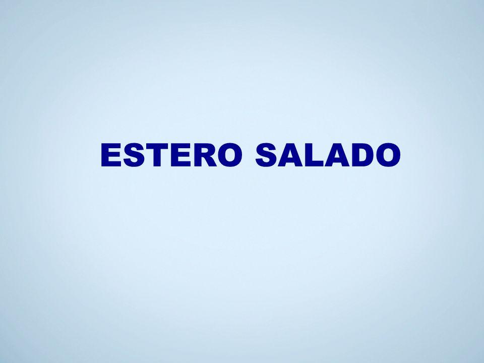 ESTERO SALADO