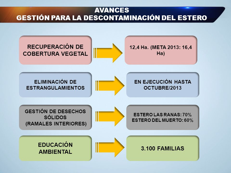 AVANCES GESTIÓN PARA LA DESCONTAMINACIÓN DEL ESTERO RECUPERACIÓN DE COBERTURA VEGETAL 12,4 Ha. (META 2013: 16,4 Ha) ELIMINACIÓN DE ESTRANGULAMIENTOS E