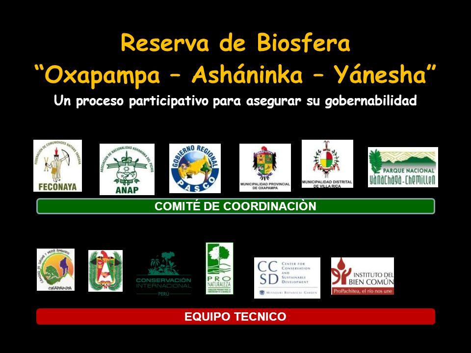 Reserva de Biosfera Oxapampa – Asháninka – Yánesha Un proceso participativo para asegurar su gobernabilidad COMITÉ DE COORDINACIÒN EQUIPO TECNICO