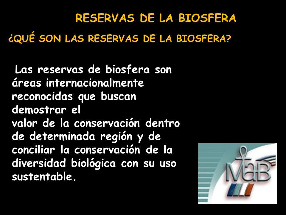 RESERVAS DE LA BIOSFERA ¿QUÉ SON LAS RESERVAS DE LA BIOSFERA? Las reservas de biosfera son áreas internacionalmente reconocidas que buscan demostrar e