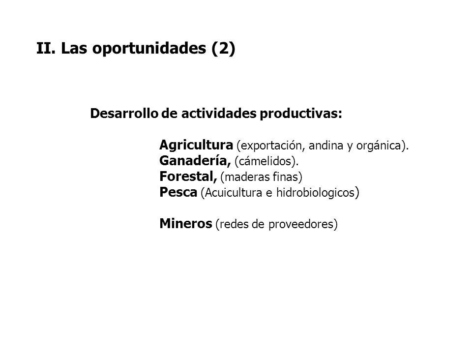 II. Las oportunidades (2) Desarrollo de actividades productivas: Agricultura (exportación, andina y orgánica). Ganadería, (cámelidos). Forestal, (made