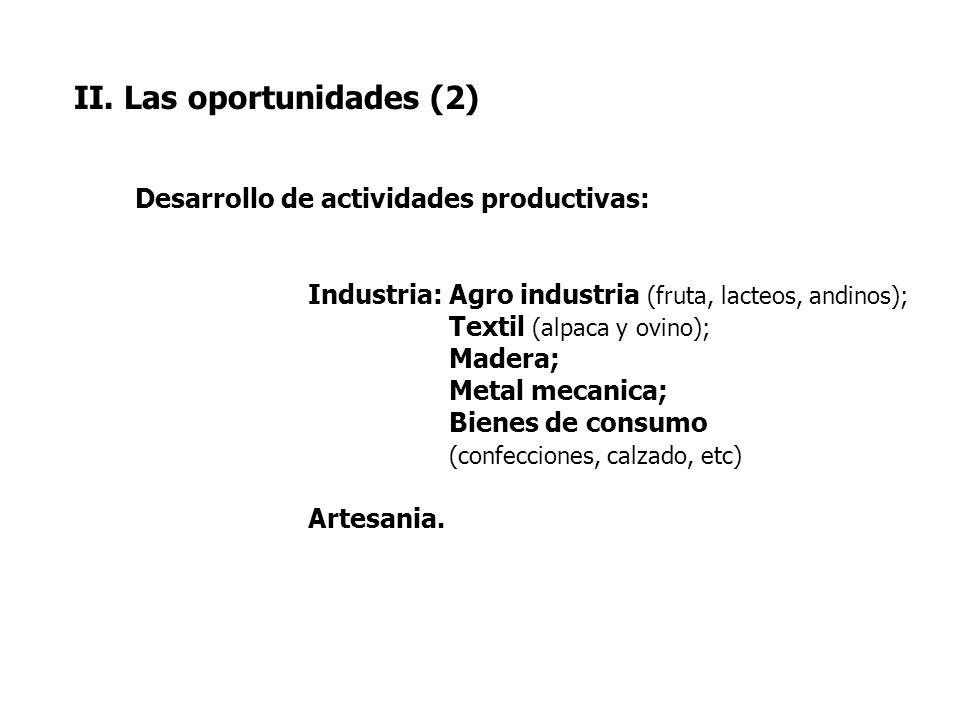 II. Las oportunidades (2) Desarrollo de actividades productivas: Industria: Agro industria (fruta, lacteos, andinos); Textil (alpaca y ovino); Madera;