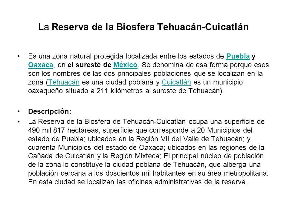 La Reserva de la Biosfera Tehuacán-Cuicatlán Es una zona natural protegida localizada entre los estados de Puebla y Oaxaca, en el sureste de México. S