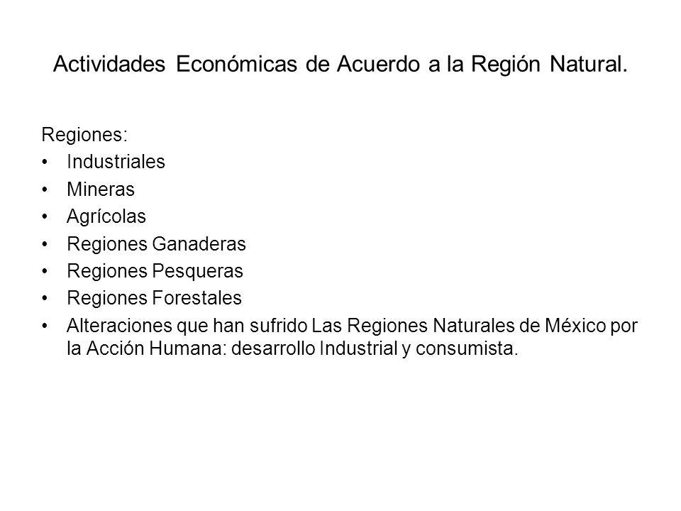 Actividades Económicas de Acuerdo a la Región Natural. Regiones: Industriales Mineras Agrícolas Regiones Ganaderas Regiones Pesqueras Regiones Foresta