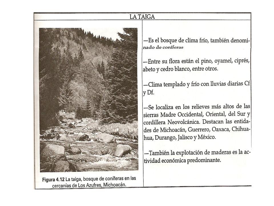 MÉXICO Reserva de la Biosfera Mapimí, 1977; Reserva de la Biosfera La Michilía, 1977; Reserva de la Biosfera Montes Azules, 1979; Reserva de la Biosfera el Cielo, 1986; Reserva de la Biosfera Sian Ka an, 1986; Reserva de la Biosfera Sierra de Manantlán1988; Reserva de la Biosfera Tehuacán-Cuicatlán; Reserva de la Biosfera Calakmul (Calakmul, extended and renamed in 2006)1993-2006; Reserva de la Biosfera El Triunfo, 1993; Reserva de la Biosfera El Vizcaíno 1993; Reserva de la Biosfera Alto Golfo de Califormia (Pinacate y Gran Desierto de Altamar)1993-1995; Reserva de la Biosfera Islas del Golfo de California, 1995; Reserva de la Biosfera Sierra Gorda, 2001; Reserva de la Biosfera Banco Chinchorro, 2003; Reserva de la Biosfera Sierra La Laguna, 2003; Reserva de la Biosfera Rio Celestún, 2004; Reserva de la Biosfera Río Lagartos, 2004; Reserva de la Biosfera Arrecife Alacranes, 2006; Reserva de la Biosfera Barranca de Metztilán, 2006; Reserva de la Biosfera Chamela-Cuixmala 2006; Reserva de la Biosfera Cuatrociénegas, 2006; Reserva de la Biosfera cumbres de Monterrey, 2006; Reserva de la Biosfera Huatulco, 2006; Reserva de la Biosfera La Encrucijada, 2006; Reserva de la Biosfera La Primavera, 2006; Reserva de la Biosfera La Sepultura, 2006; Reserva de la Biosfera Laguna Madre y Delta del Río Bravo, 2006; Reserva de la Biosfera Los Tuxtlas, 2006; Reserva de la Biosfera Maderas del Carmen, Coahuila, 2006; Reserva de la Biosfera Mariposa Monarca, 2006; Reserva de la Biosfera Pantanos de Centla, 2006; Reserva de la Biosfera Selva del Ocote, 2006; Reserva de la Biosfera Sierra de Huautla, 2006; Reserva de la Biosfera Sistema Arrecifal Veracruzano, Reserva de la Biosfera Volcán Tacana, 2006; Reserva de la Biosfera Sierra de Alamos - Río Cuchujaqui, 2007; Reserva de la Biosfera Lacantún; -Reserva de la Biosfera CuxtalReserva de la Biosfera Sian Ka anReserva de la Biosfera Tehuacán-CuicatlánReserva de la Biosfera El Vizcaíno Reserva de la Biosfera Sierra Gorda
