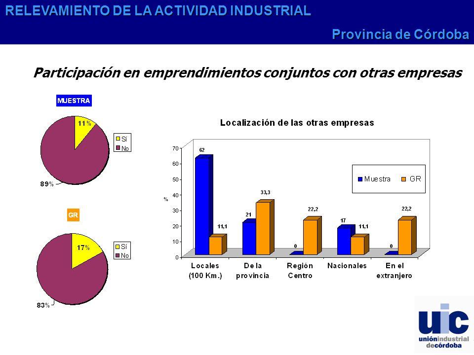 Participación en emprendimientos conjuntos con otras empresas RELEVAMIENTO DE LA ACTIVIDAD INDUSTRIAL Provincia de Córdoba