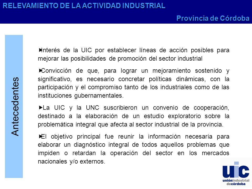 Antecedentes Interés de la UIC por establecer líneas de acción posibles para mejorar las posibilidades de promoción del sector industrial Convicción d