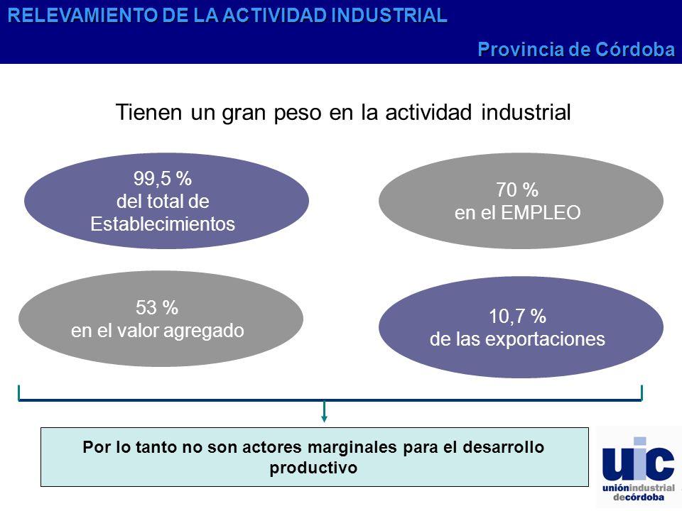 Tienen un gran peso en la actividad industrial Por lo tanto no son actores marginales para el desarrollo productivo 53 % en el valor agregado 10,7 % de las exportaciones 99,5 % del total de Establecimientos 70 % en el EMPLEO RELEVAMIENTO DE LA ACTIVIDAD INDUSTRIAL Provincia de Córdoba