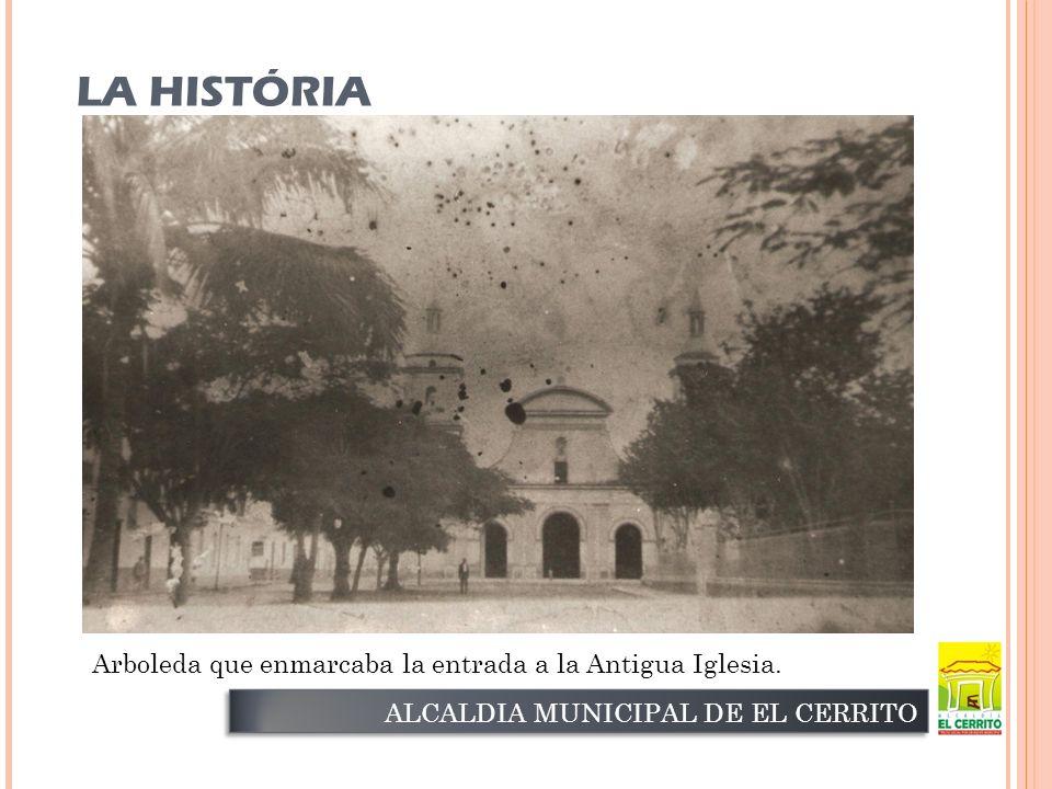 ALCALDIA MUNICIPAL DE EL CERRITO Arboleda que enmarcaba la entrada a la Antigua Iglesia.