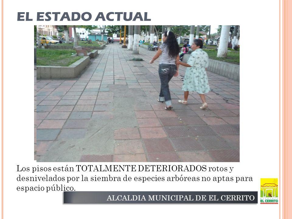 EL ESTADO ACTUAL ALCALDIA MUNICIPAL DE EL CERRITO Los pisos están TOTALMENTE DETERIORADOS rotos y desnivelados por la siembra de especies arbóreas no aptas para espacio público.
