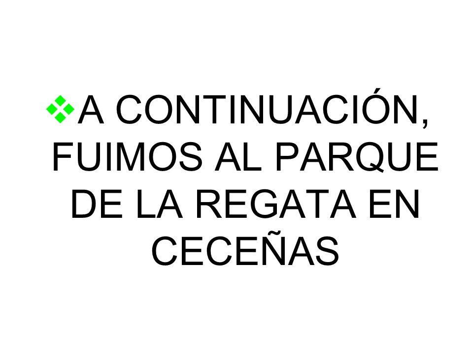 A CONTINUACIÓN, FUIMOS AL PARQUE DE LA REGATA EN CECEÑAS