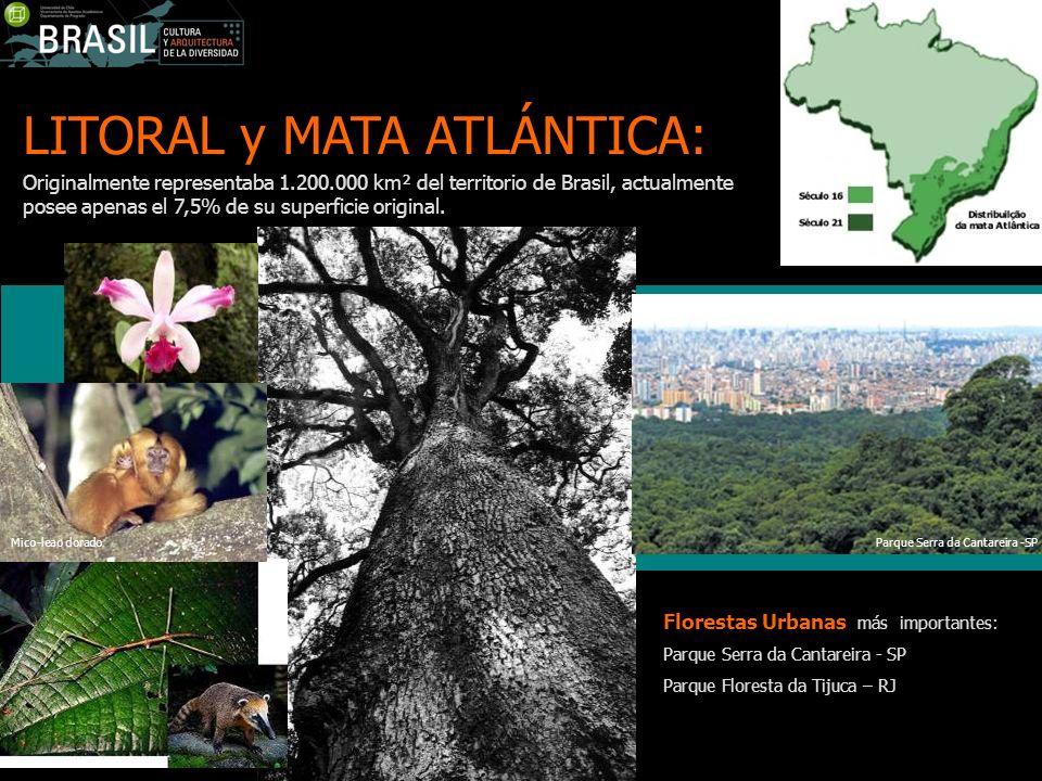 LITORAL y MATA ATLÁNTICA: Originalmente representaba 1.200.000 km² del territorio de Brasil, actualmente posee apenas el 7,5% de su superficie origina