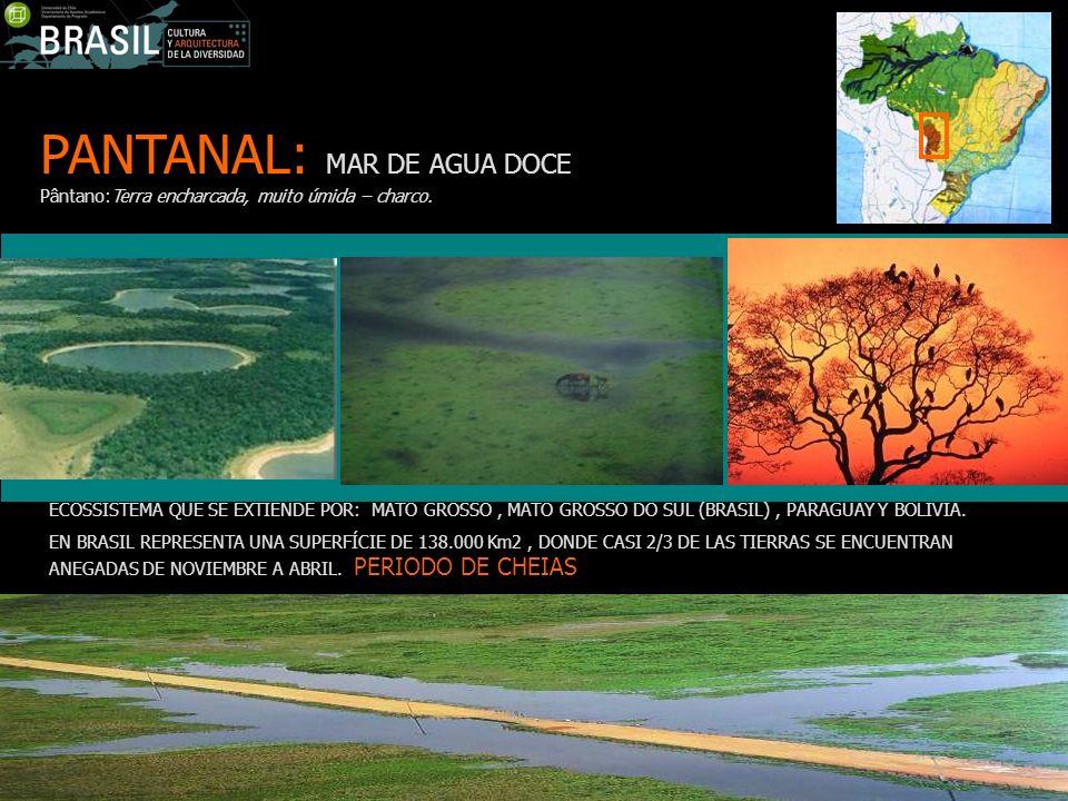 PANTANAL: MAR DE AGUA DOCE Pântano:Terra encharcada, muito úmida – charco. ECOSSISTEMA QUE SE EXTIENDE POR: MATO GROSSO, MATO GROSSO DO SUL (BRASIL),