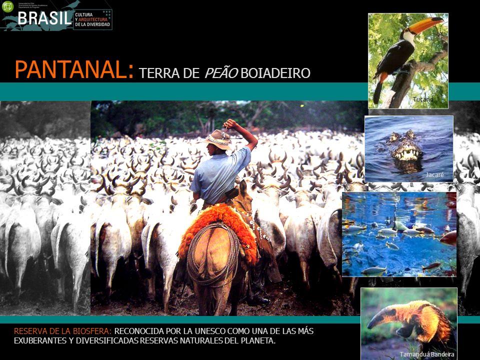 PANTANAL: TERRA DE PEÃO BOIADEIRO RESERVA DE LA BIOSFERA: RECONOCIDA POR LA UNESCO COMO UNA DE LAS MÁS EXUBERANTES Y DIVERSIFICADAS RESERVAS NATURALES