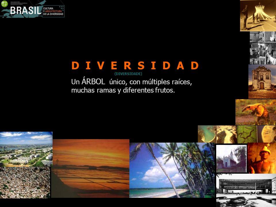 Del Ecuador hasta el trópico de Capricornio, CALOR, lo que define Brasil como un país de clima Tropical.