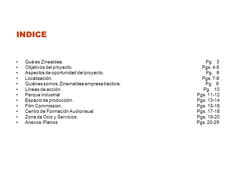 INDICE Qué es Zinealdea.Pg. 3 Objetivos del proyecto.