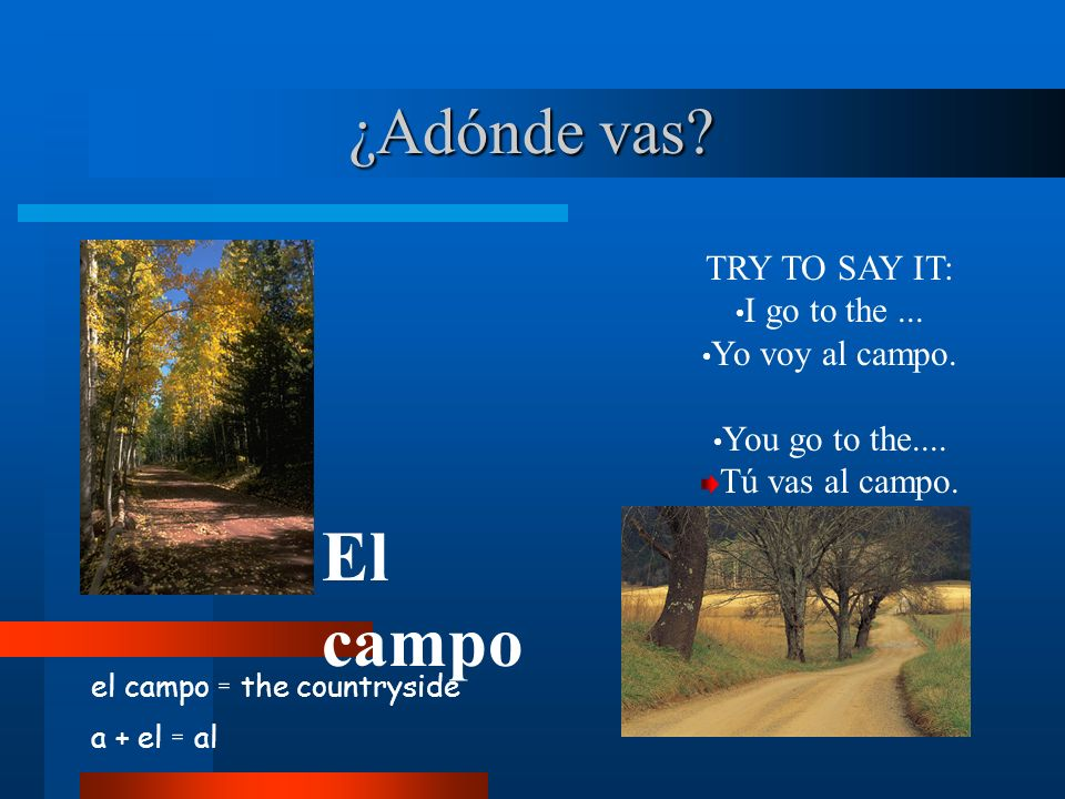 ¿Adónde vas? el campo = the countryside a + el = al El campo TRY TO SAY IT: I go to the... Yo voy al campo. You go to the.... Tú vas al campo.