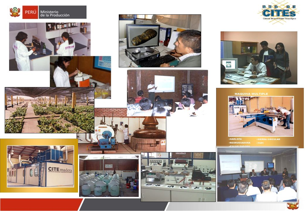 Gracias www.cites.pe OTCIT Vice Ministerio de MYPE e Industria Enero 2012 30