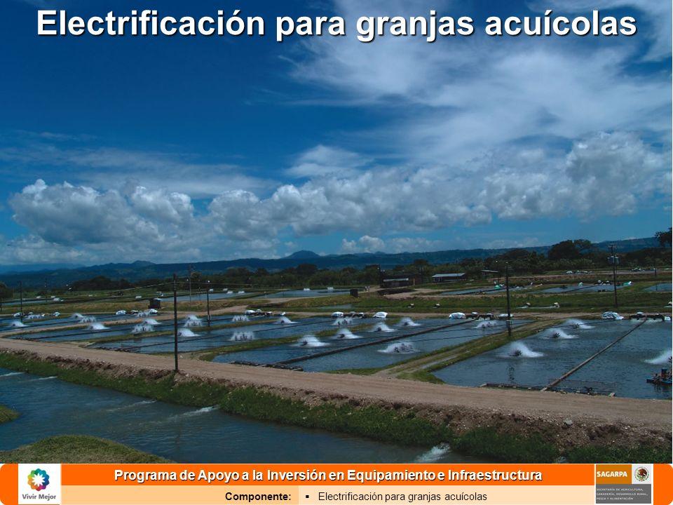 Programa de Apoyo a la Inversión en Equipamiento e Infraestructura Componente: Electrificación para granjas acuícolas