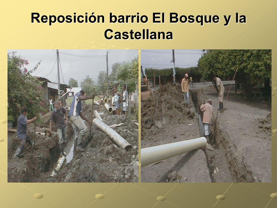 Reposición barrio El Bosque y la Castellana