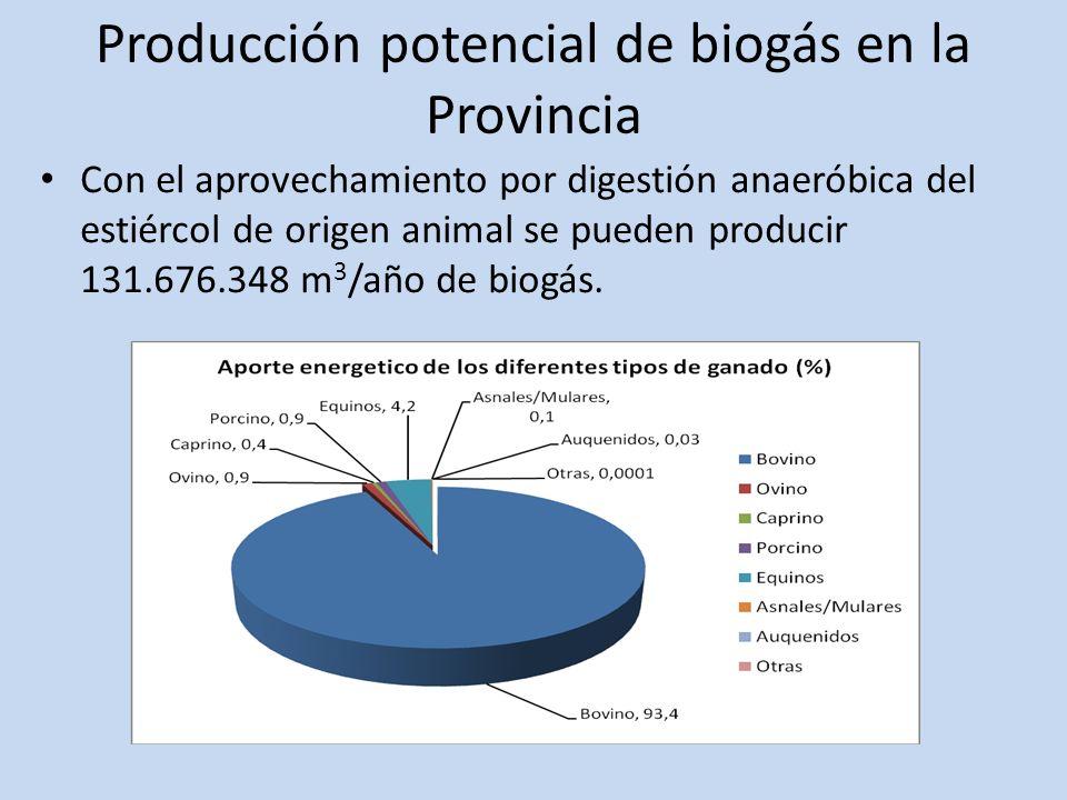 Producción potencial de biogás en la Provincia Con el aprovechamiento por digestión anaeróbica del estiércol de origen animal se pueden producir 131.6
