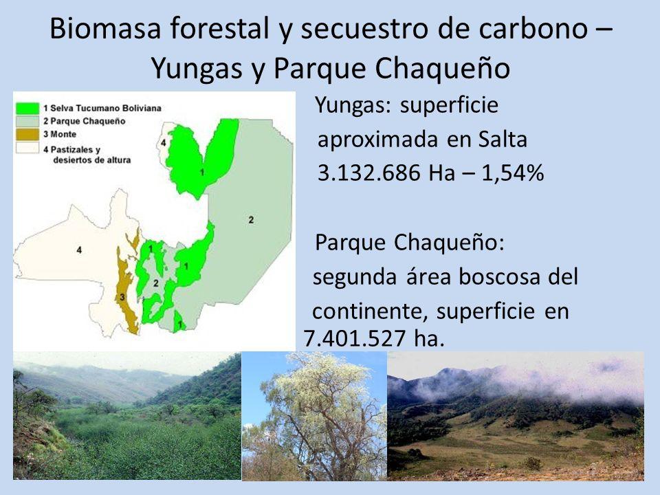 Biomasa forestal y secuestro de carbono – Yungas y Parque Chaqueño Yungas: superficie aproximada en Salta 3.132.686 Ha – 1,54% Parque Chaqueño: segund