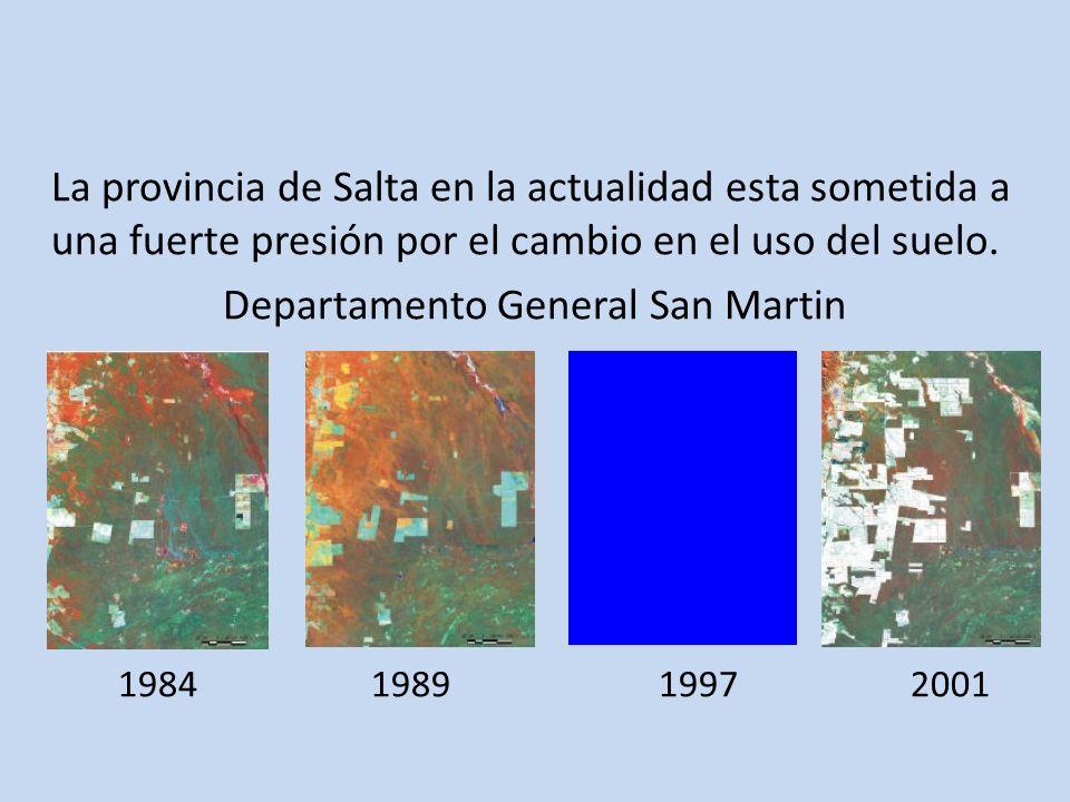 La provincia de Salta en la actualidad esta sometida a una fuerte presión por el cambio en el uso del suelo. Departamento General San Martin 1984 1989
