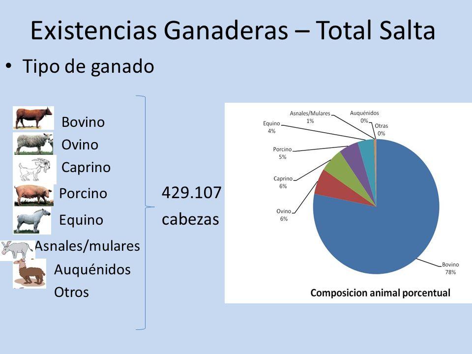 Existencias Ganaderas – Total Salta Tipo de ganado Bovino Ovino Caprino Porcino 429.107 Equino cabezas Asnales/mulares Auquénidos Otros