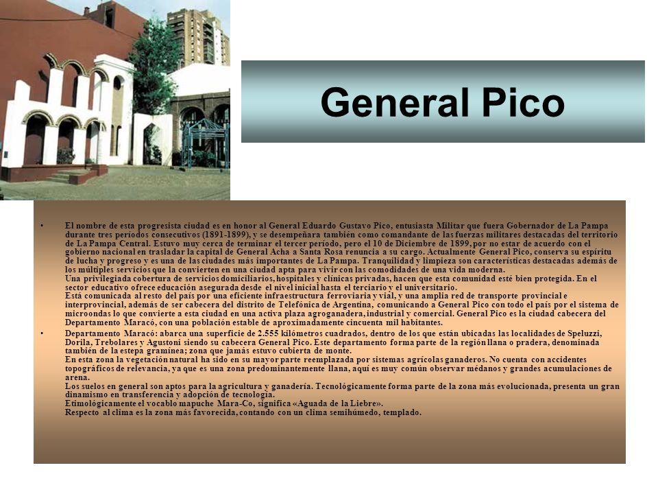Santa Rosa Con más de 1.200 plazas hoteleras, la capital de la provincia de La Pampa dispone de todos los servicios al turista o al viajero.