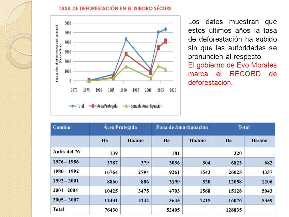 Los datos muestran que estos últimos años la tasa de deforestación ha subido sin que las autoridades se pronuncien al respecto. El gobierno de Evo Mor