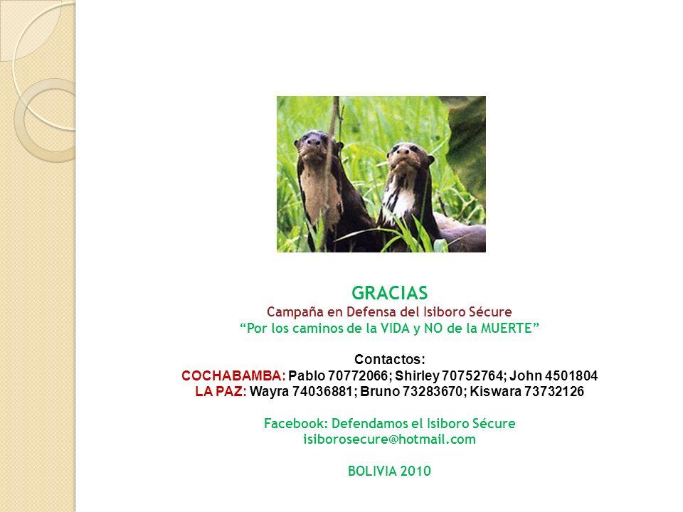 GRACIAS Campaña en Defensa del Isiboro Sécure Por los caminos de la VIDA y NO de la MUERTE Contactos: COCHABAMBA: Pablo 70772066; Shirley 70752764; Jo