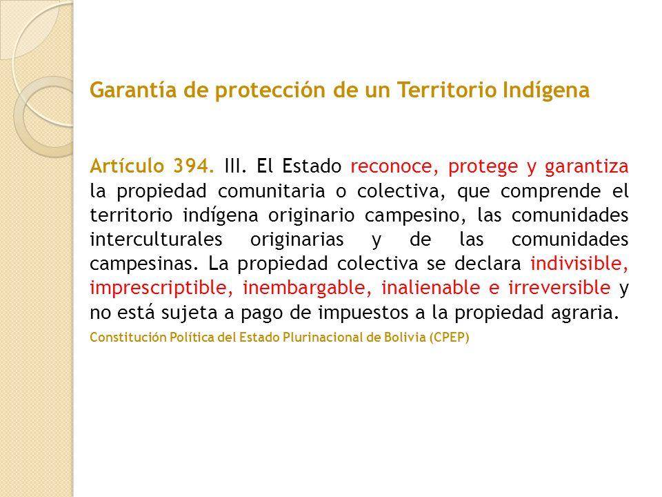 Artículo 394. III. El Estado reconoce, protege y garantiza la propiedad comunitaria o colectiva, que comprende el territorio indígena originario campe