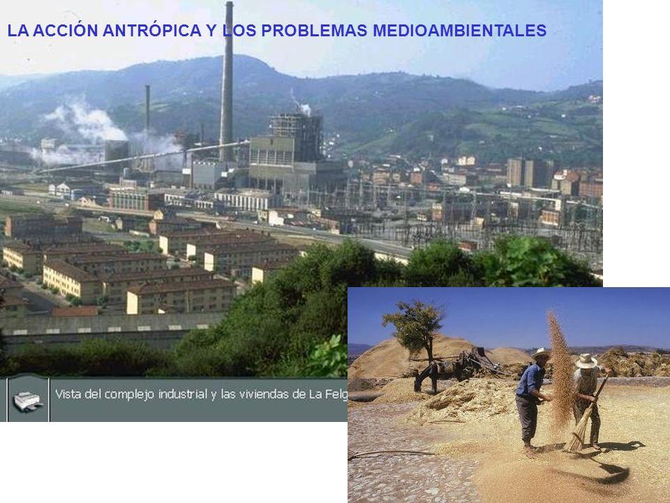 Procesos de degradación medioambiental: LAEXPANSIÓNURBANALAEXPANSIÓNURBANA