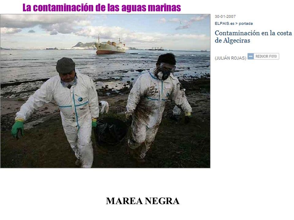 La contaminación de las aguas marinas MAREA NEGRA