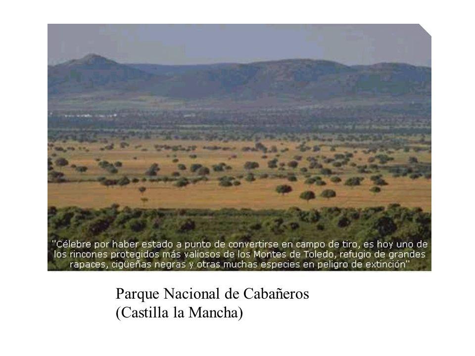 Parque Nacional de Cabañeros (Castilla la Mancha)