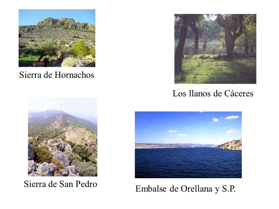 Los llanos de Cáceres Sierra de Hornachos Sierra de San Pedro Embalse de Orellana y S.P.