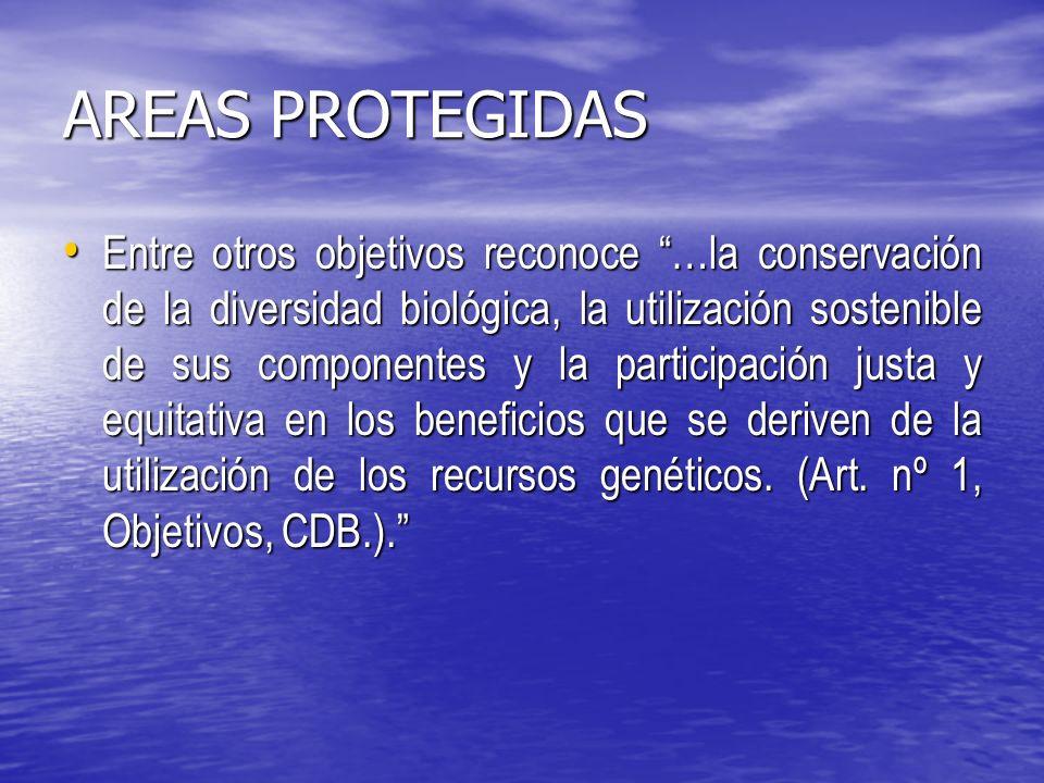 AREAS PROTEGIDAS Entre otros objetivos reconoce …la conservación de la diversidad biológica, la utilización sostenible de sus componentes y la participación justa y equitativa en los beneficios que se deriven de la utilización de los recursos genéticos.