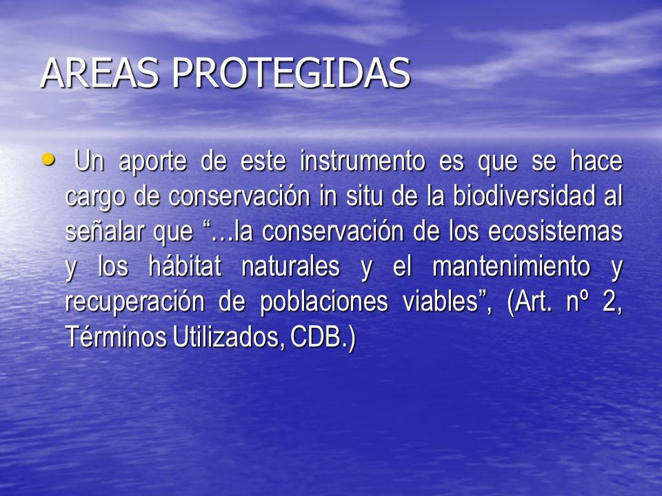AREAS PROTEGIDAS Un aporte de este instrumento es que se hace cargo de conservación in situ de la biodiversidad al señalar que …la conservación de los ecosistemas y los hábitat naturales y el mantenimiento y recuperación de poblaciones viables, (Art.
