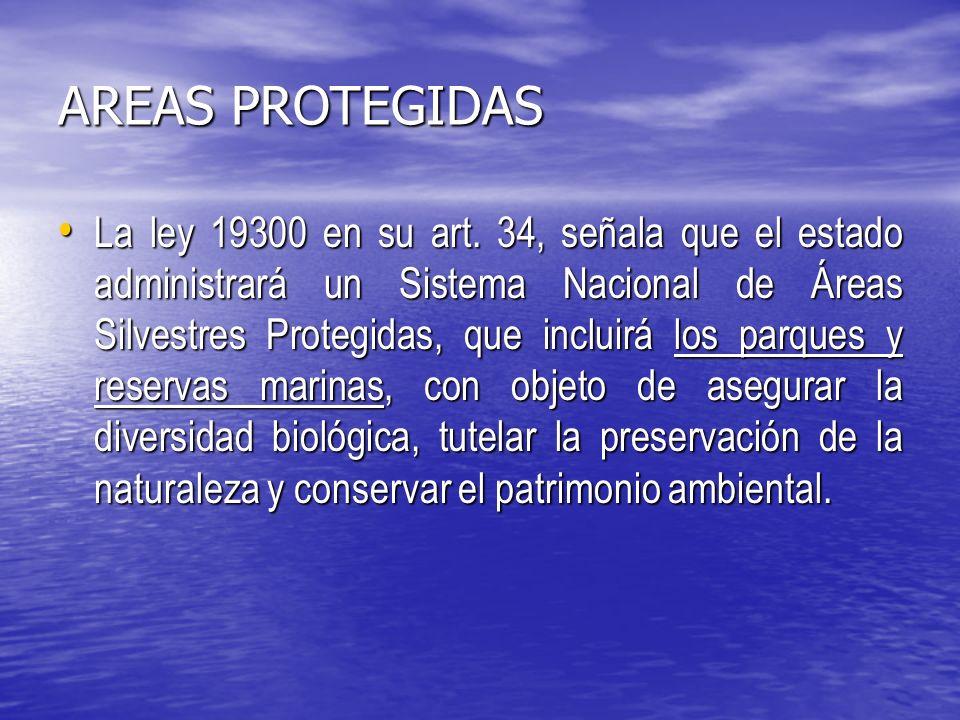 AREAS PROTEGIDAS La ley 19300 en su art.