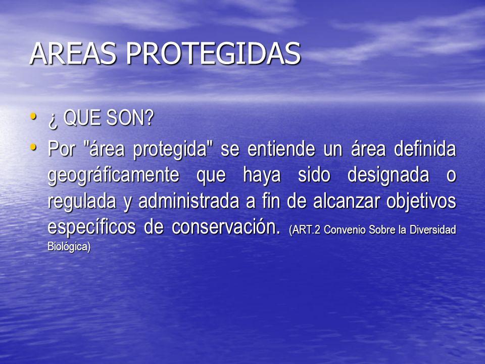 AREAS PROTEGIDAS Artículo 11 señala que: Las Reservas de Bosques y los Parques Nacionales de Turismo existentes en la actualidad y los que se establezcan de acuerdo con esta ley, no podrán ser destinados a otro objeto sino en virtud de una ley.