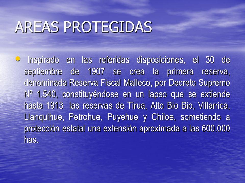 AREAS PROTEGIDAS Inspirado en las referidas disposiciones, el 30 de septiembre de 1907 se crea la primera reserva, denominada Reserva Fiscal Malleco, por Decreto Supremo Nº 1.540, constituyéndose en un lapso que se extiende hasta 1913 las reservas de Tirua, Alto Bio Bio, Villarrica, Llanquihue, Petrohue, Puyehue y Chiloe, sometiendo a protección estatal una extensión aproximada a las 600.000 has.