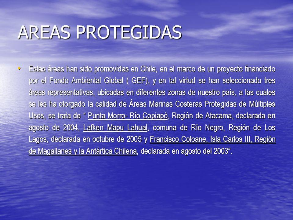 AREAS PROTEGIDAS Estas áreas han sido promovidas en Chile, en el marco de un proyecto financiado por el Fondo Ambiental Global ( GEF), y en tal virtud se han seleccionado tres áreas representativas, ubicadas en diferentes zonas de nuestro país, a las cuales se les ha otorgado la calidad de Áreas Marinas Costeras Protegidas de Múltiples Usos, se trata de Punta Morro- Río Copiapó, Región de Atacama, declarada en agosto de 2004, Lafken Mapu Lahual, comuna de Río Negro, Región de Los Lagos, declarada en octubre de 2005 y Francisco Coloane, Isla Carlos III, Región de Magallanes y la Antártica Chilena, declarada en agosto del 2003.